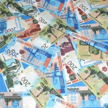 Полотно вафельное Деньги шир 150 см